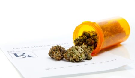Лечебные свойства марихуаны и как её правильно выбирать