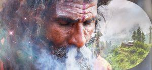 чарас, история происходждения, как сделать чарас, индийское лакомство